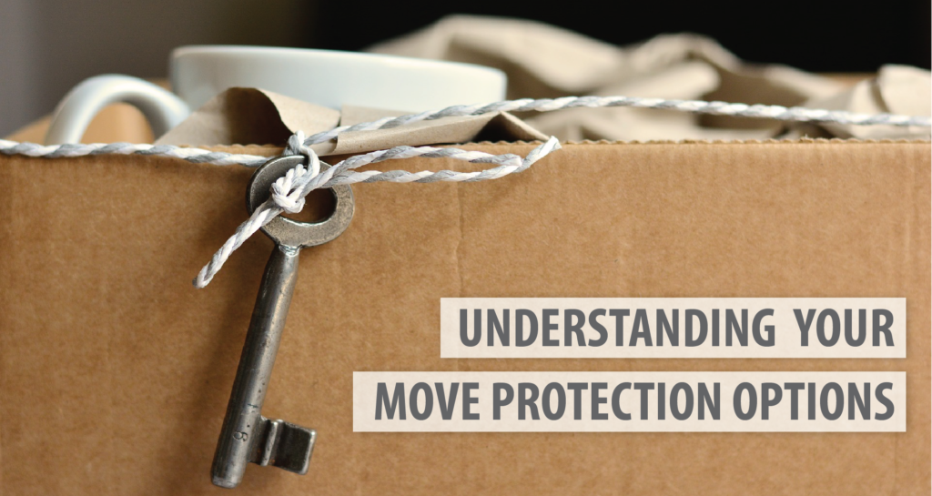 Move-Protection-Options-ADSIMovingSystems-01