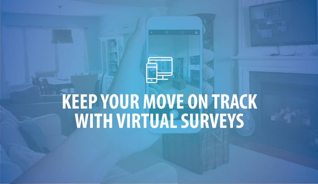 VirtualSurvey_BlogHeader2019-01